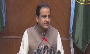 سندھ حکومت نے پام آئل کی مقامی سطح پر پیداوار کا کامیاب تجربہ کرلیا