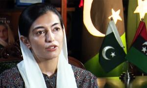 PPP plans to make Aseefa chief of youth wing
