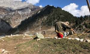 In Indian occupied Kashmir, empty grave for teenager killed by Indian forces