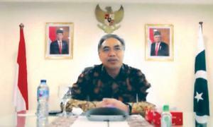Indonesian envoy hosts webinar