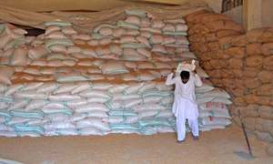 Sindh releasing six-year-old wheat stocks to mills