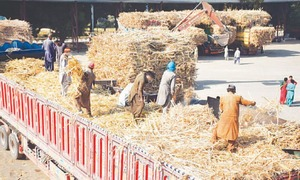 Sugar likely to cross Rs100 a kg
