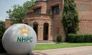 Twenty-four players to attend camp at PCB's High Performance Centre