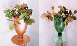 Wonder Craft: Plastic bottle planters