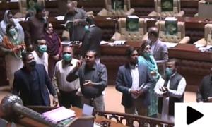 سندھ اسمبلی اجلاس میں پھر شور شرابا