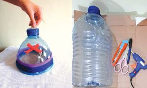 Wonder Craft: Plastic bottle money box