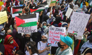 Thousands turn up at 'Pakistan for Palestine' demonstration in Karachi