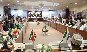 OIC states seek UN probe into Israeli actions during Gaza conflict