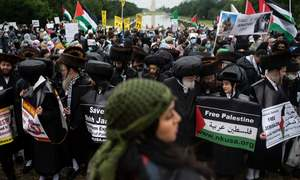 Pro-Palestine rally in Washington seeks end to US aid to Israel