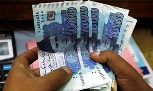 نجی شعبوں کی جانب سے بینکوں سے قرض لینے میں 196 فیصد اضافہ