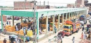 ACE fails to start probe into new sabzi mandi plots scam