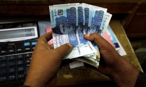Sell-off revenue used to repay debt, reduce poverty, Senate body told