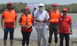 Dawlance runs mangrove plantation drive in a bid to promote environmental sustainability