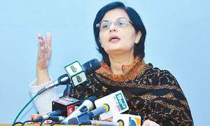 Govt working on grand social safety plan: PM aide
