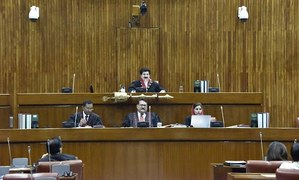 Senate passes FATF-related bill amid opposition protest