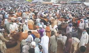 Eid economy regains lost ground