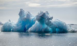'Solastalgia' and 'doomism': New climate lingo boggles the mind