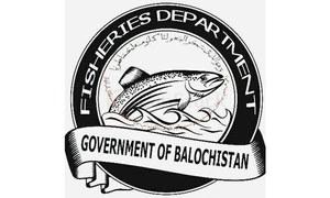17 Balochistan Fisheries Department employees fired