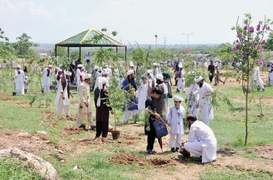 Ministry, religious organisation join hands in plantation drive