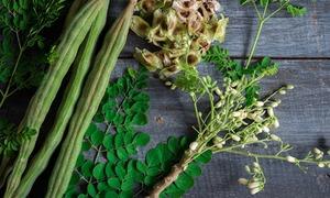سوہانجنا: بیش بہا غذائی افادیت سے بھرپور دیسی درخت