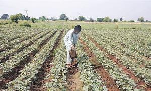 Promoting savings among farmers
