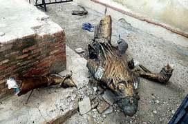 Ranjit Singh's statue again vandalised, suspect held