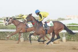 Thunder Star, rider Ramzan hog limelight at Karachi races