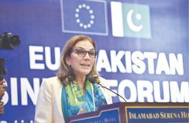 EU-Pakistan business forum for SMEs launched