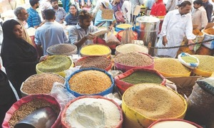 Pakistan becomes self-sufficient in mung bean output