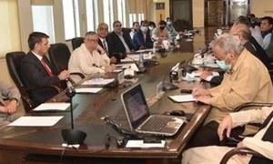 وفاق، صوبے ٹیکس دہندگان کیلئے سنگل پورٹل پر متفق