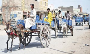 ENVIRONMENT: IS JACOBABAD READY FOR CLIMATE CHANGE?
