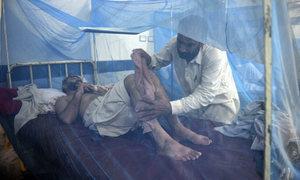 Peshawar hit hard by both Covid, dengue