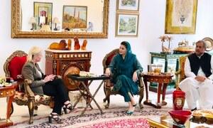 امریکی سفیر کی علیحدہ ملاقاتوں سے مسلم لیگ (ن) میں تقسیم کی قیاس آرائیاں