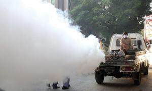 Downward trend in dengue cases seen in Islamabad