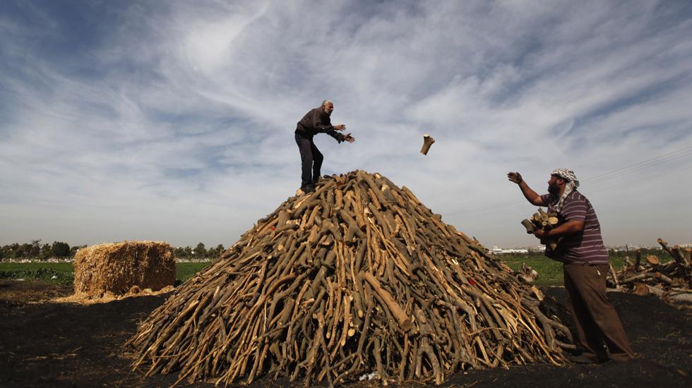 فلسطین کے کارکن لکڑی کو جمع کر کے جلاتے ہیں تاکہ اسےکوئلے میں تبدیل کر دیا جائے۔