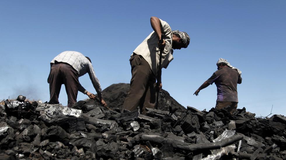 فلسطینی کارکن کام میں مشغول ہیں۔